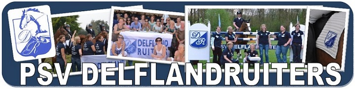 delflandruiters.nl
