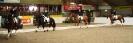 2008_03_02_Overig_Viertalwedstrijd_Merrel_Cup